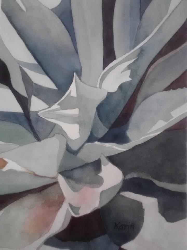 Agave Shadows II