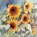 """Abiquiu Sunflowers, 15""""w x 15""""h, original watercolor, $275"""