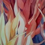 Agave Ablaze